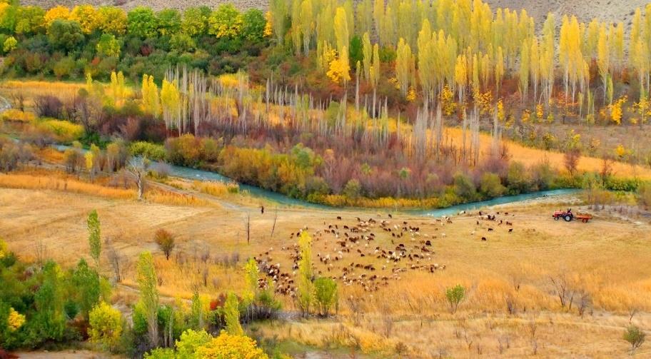 طبیعت پاییزی روستای هرانده
