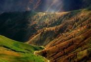 چشم اندازی اطراف کوه روبار