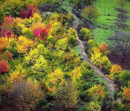 طبیعت زیبای پاییزی در مسیر دریاچه چورت