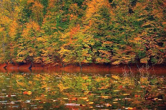 پاییز در دریاچه چورت