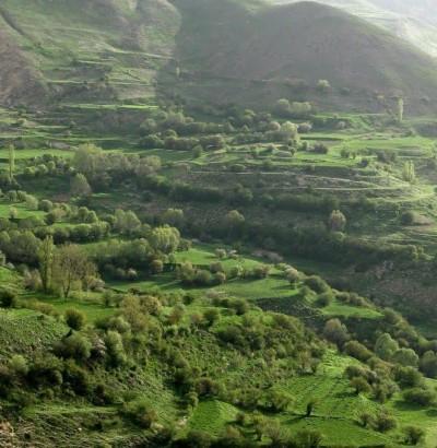 طبیعت اطراف روستای نوا