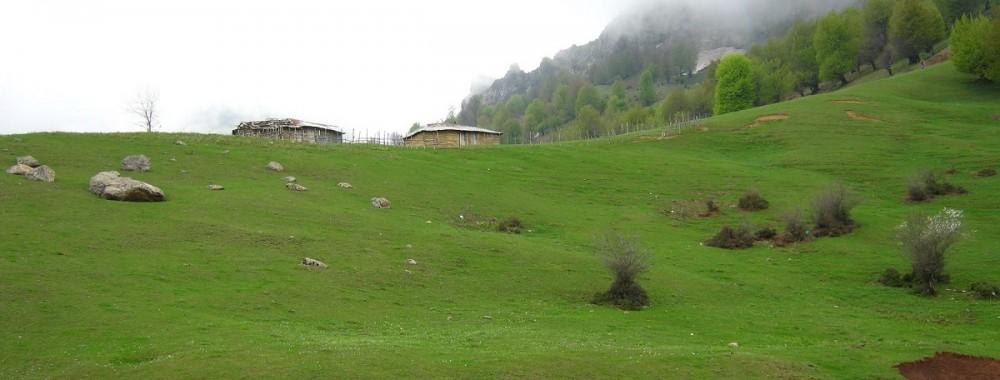 دشت کوه روبار ماسوله