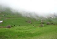 کوه روبار در مه