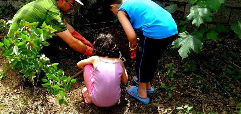 آموزش درختکاری به کودکان در اقامتگاه بوم گردی گیله بوم